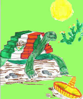 tortue mexicaine de Guillem